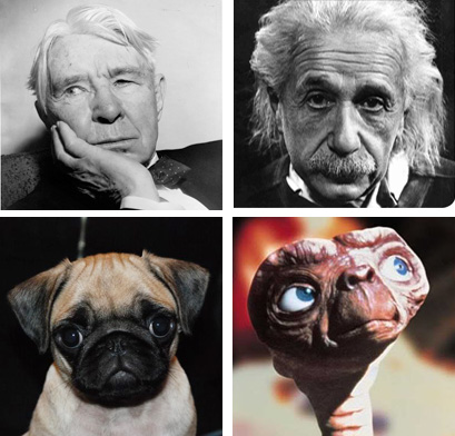 ET-Film-Facts-Face-Einstein